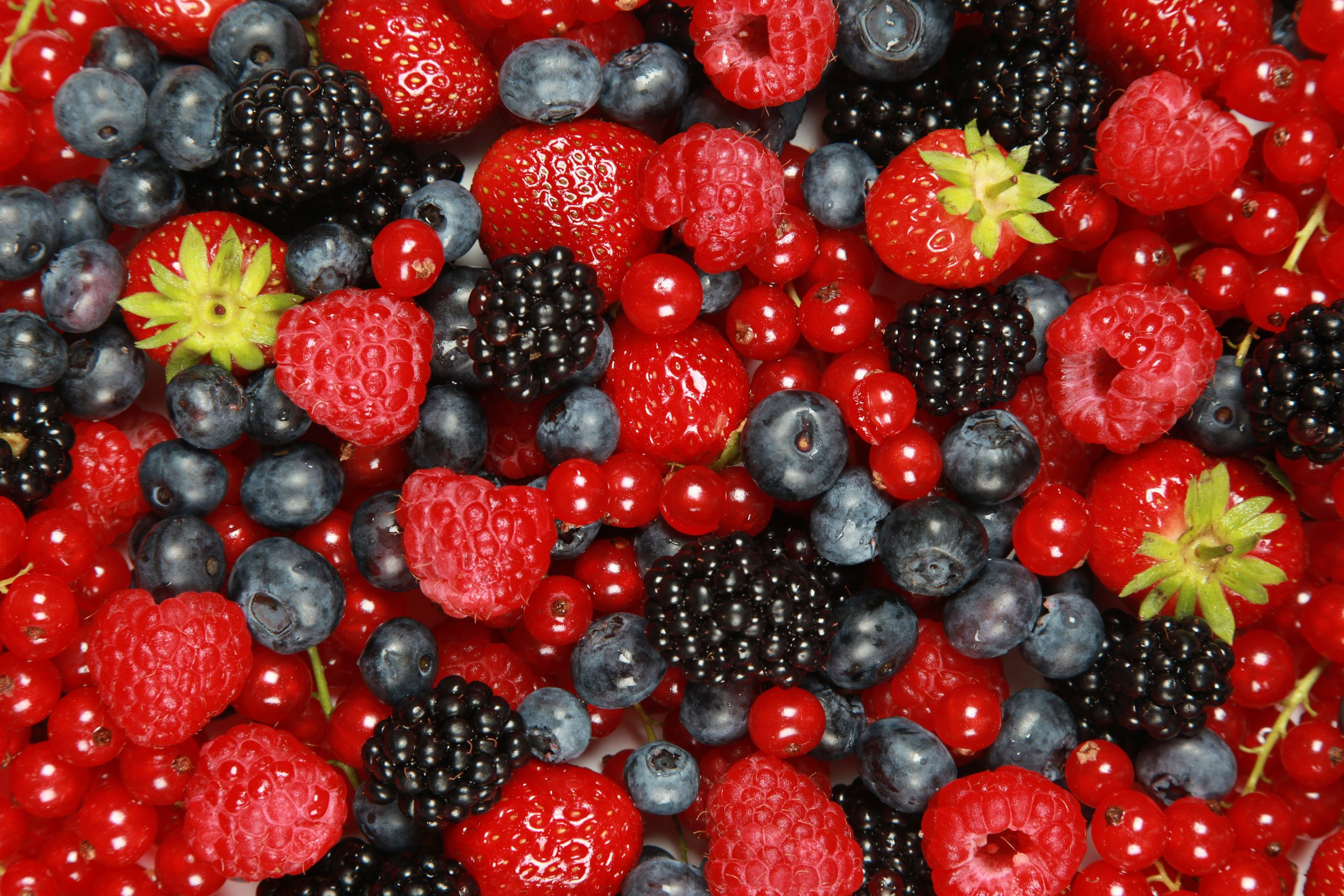 frutos rojos, frutillas, arándanos