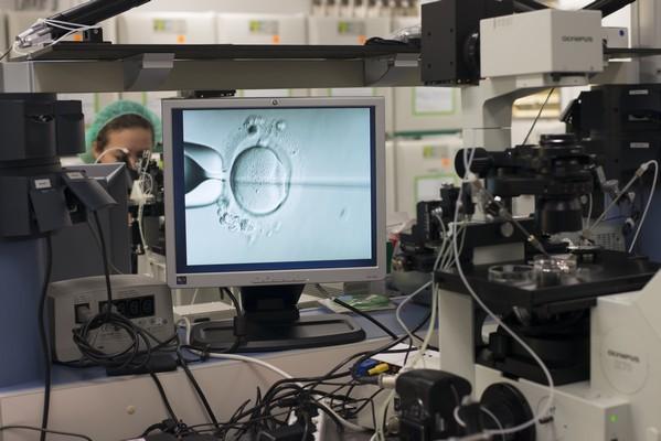 Fertilización in vitro IVI
