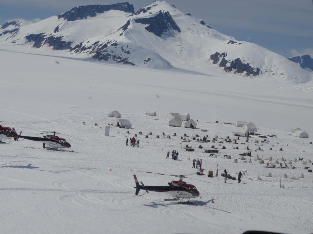 Llegada en helicóptero al campo de perros