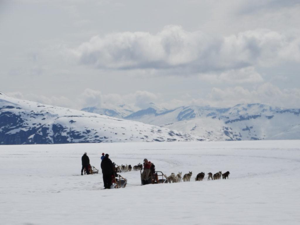 trineo en Alaska