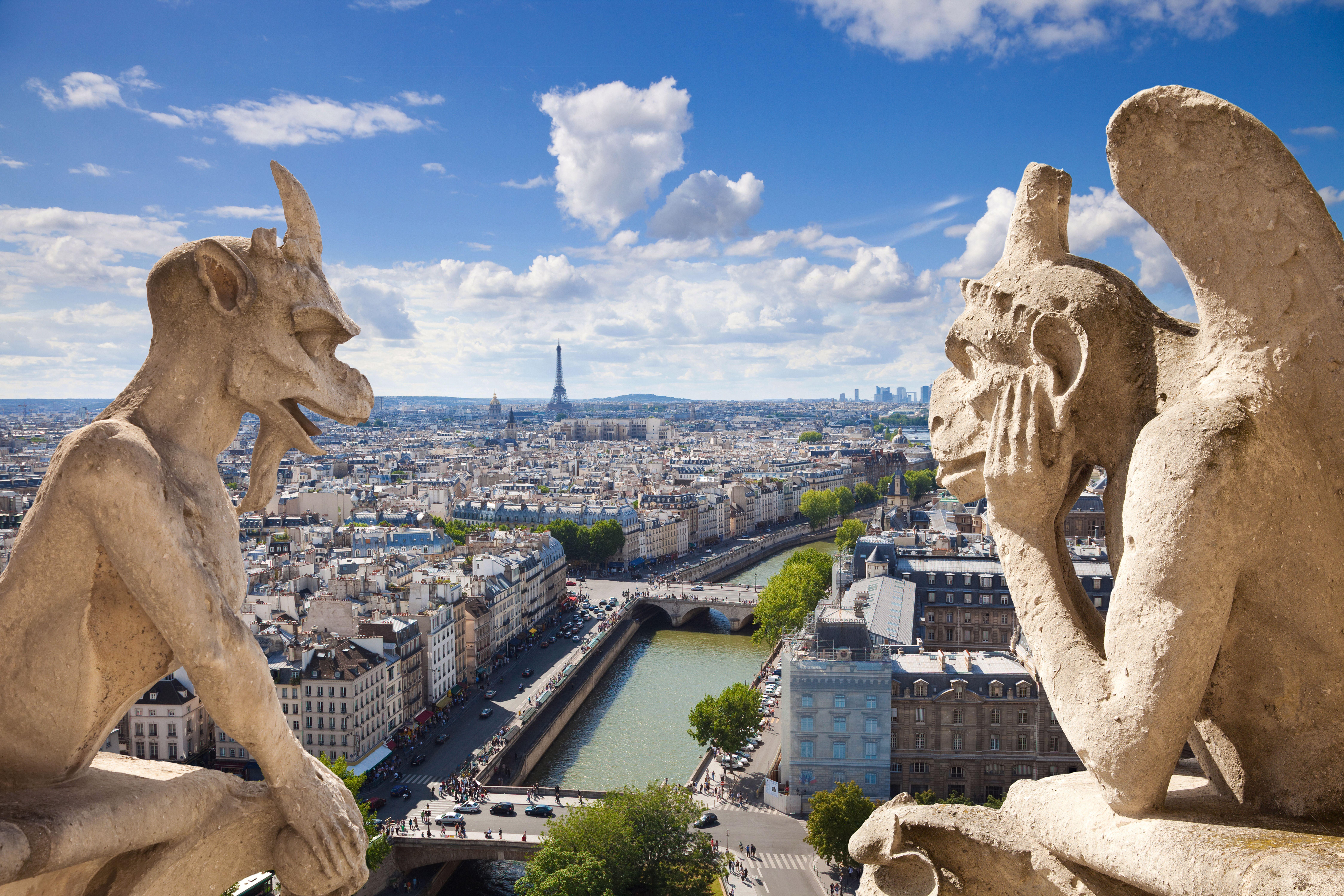 notre-dame-de-paris-france-notre-dame-de-paris-the-scene-of-the-city-view-view-gargoyles