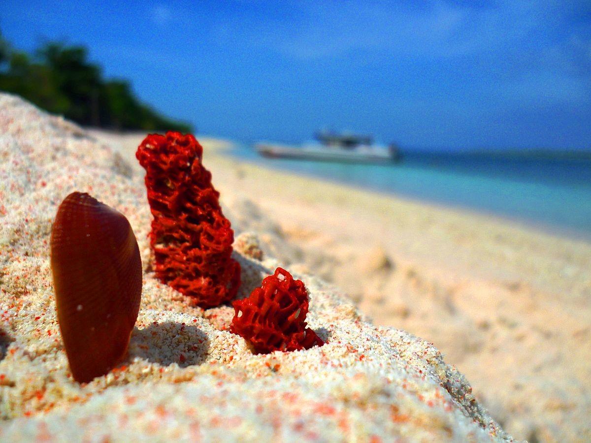 Great Santa Cruz - Filipinas