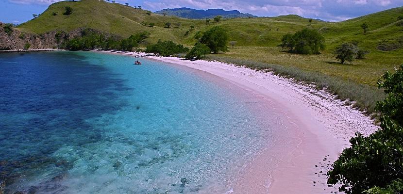 pink-beach-komodo-2