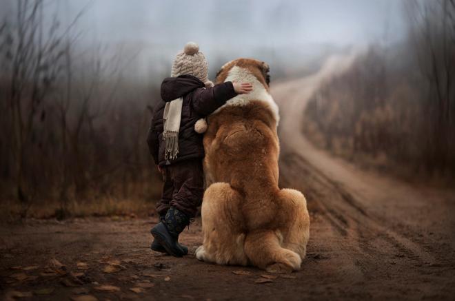 perros buenas personas