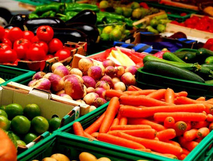 vegetariano significado