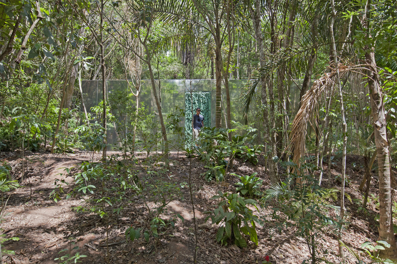 Inhotim arte selva tropical Cristina Iglesias 3
