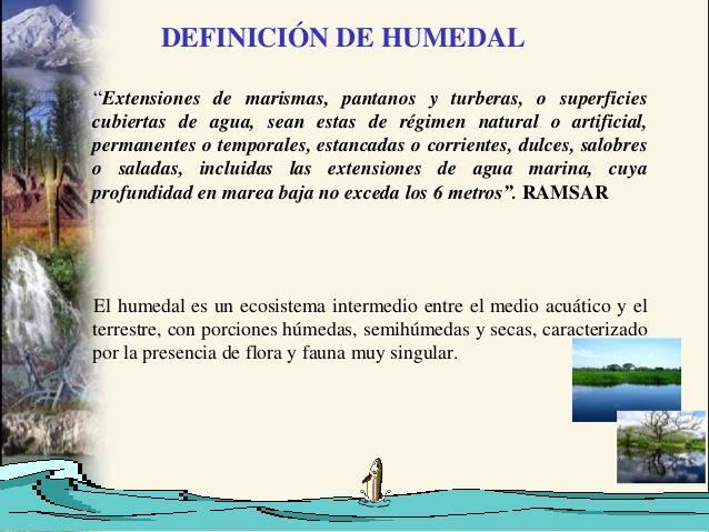 humedales-4-638