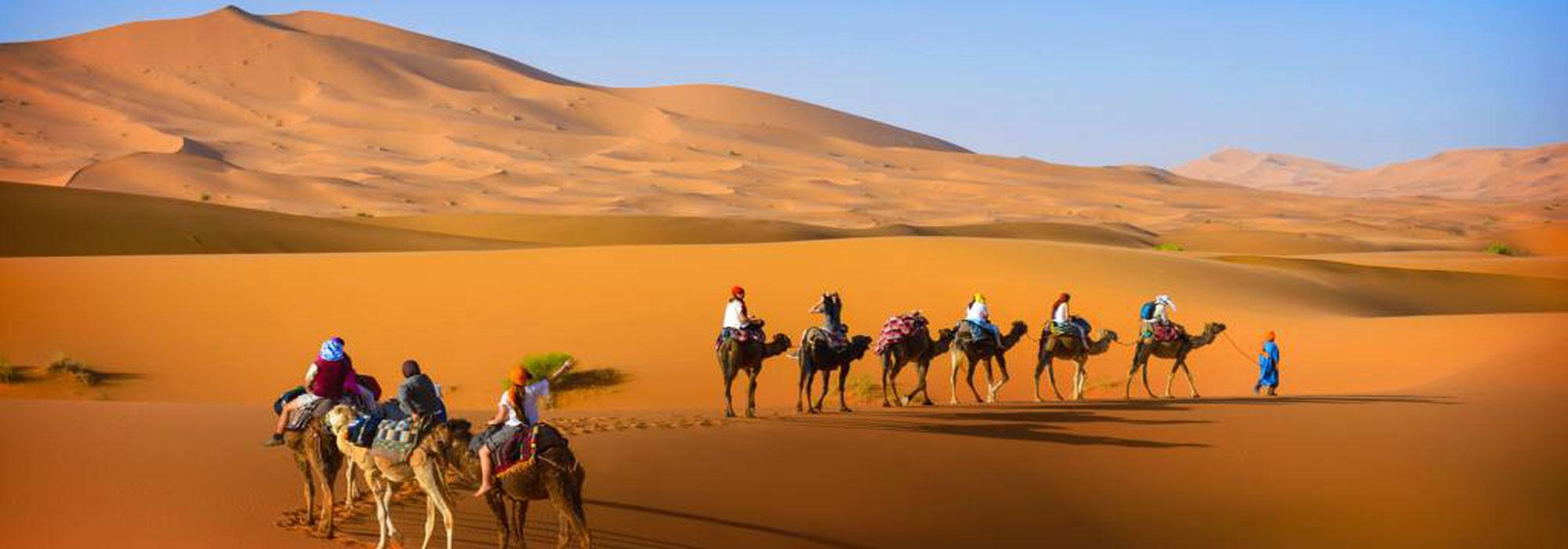 Camel-trekking-tour-marrakech