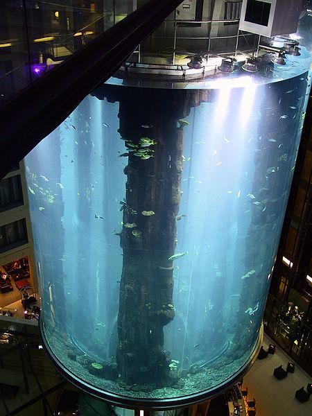 ascensores extraños 4c