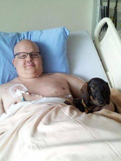 perros-en-hospital