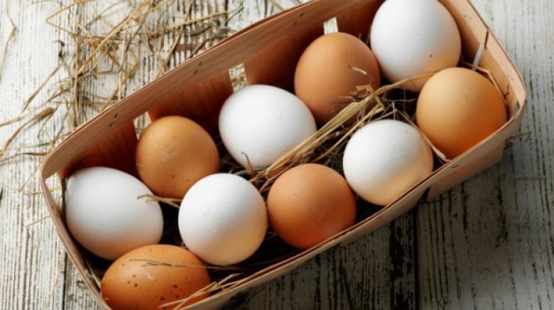 huevos blancos y marrones