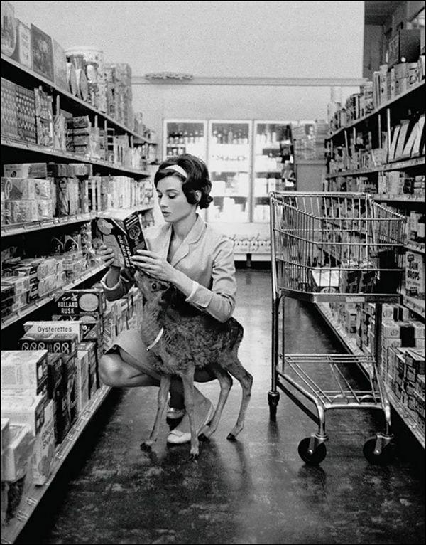 Audrey Hepburn hacienda sus compras semanales con su pequeño venado mascota en 1958