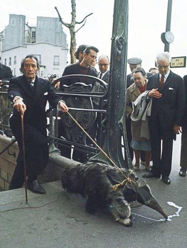 Salvador Dalí paseando su mascota