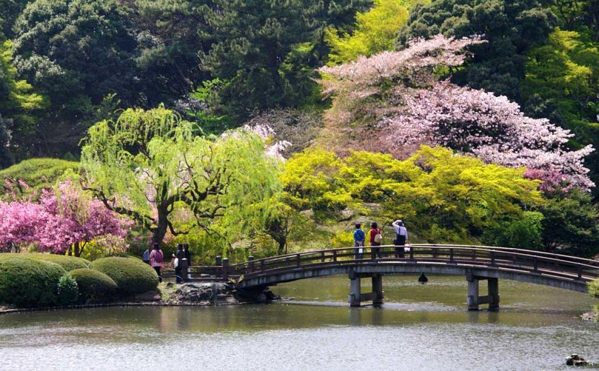 Incre bles jardines japoneses alrededor del mundo buena - Jardines increibles ...