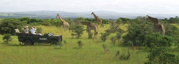 PARQUE-KRUGER-safari-960x345_opt