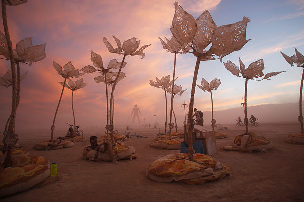 burning-man-2014-8_opt