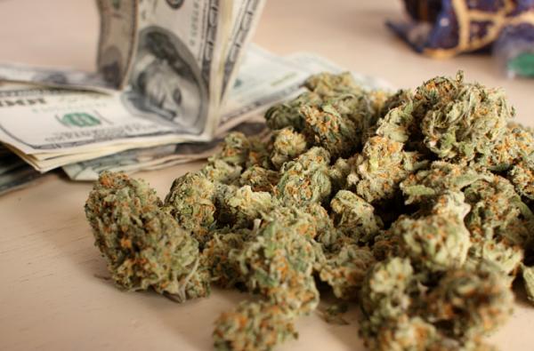 cannabis 1_opt