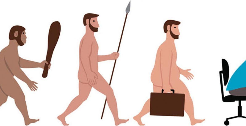 evolucion homo sapiens