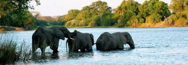 viaje-sudafrica-cataratas-victoria-botswana_opt