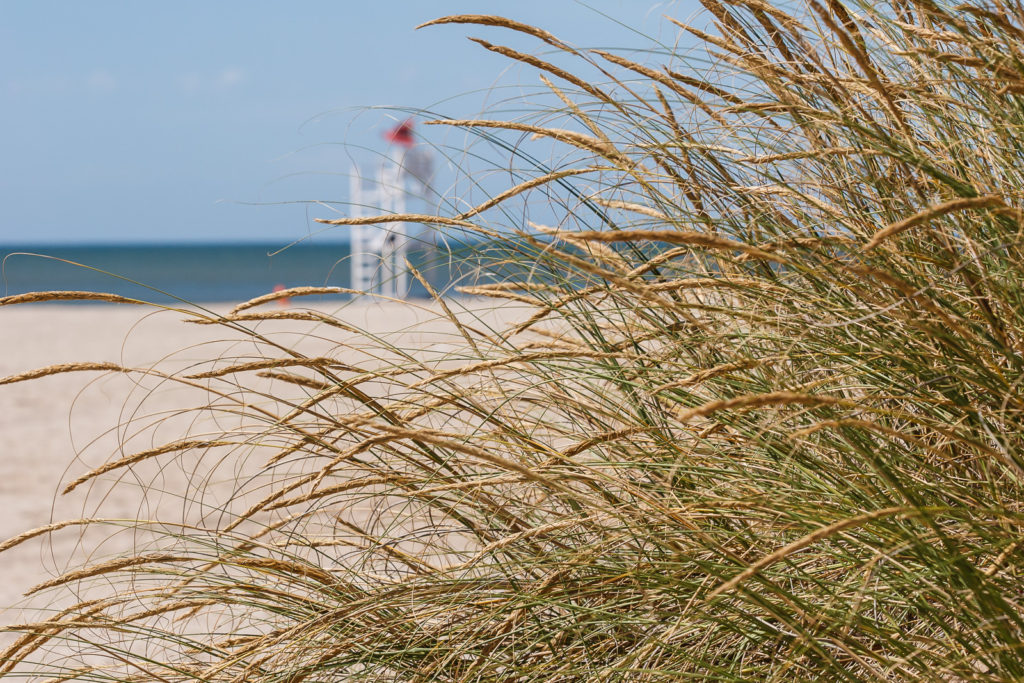 playas-slow