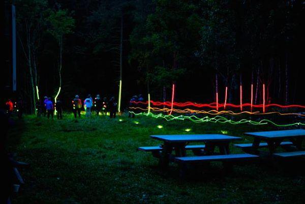 bosque-noruego-1_opt