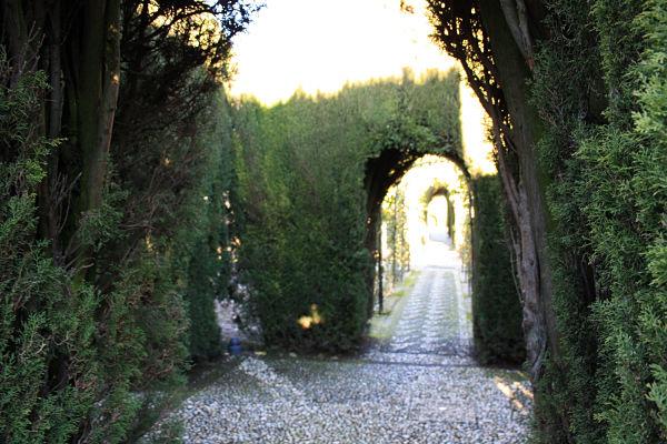 jardines-cipreses-generalife-alhambra_opt