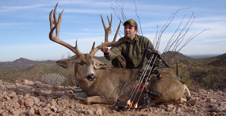 cazar animales
