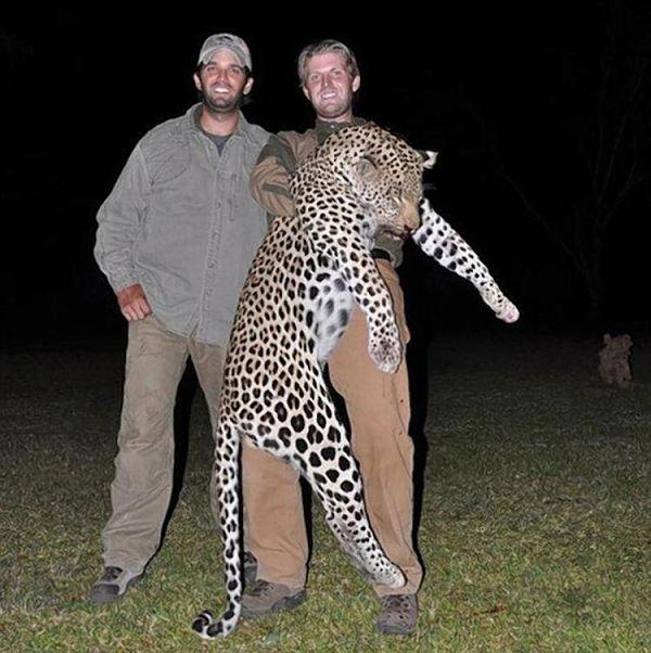 matanza-animales-trump-jr-3_opt