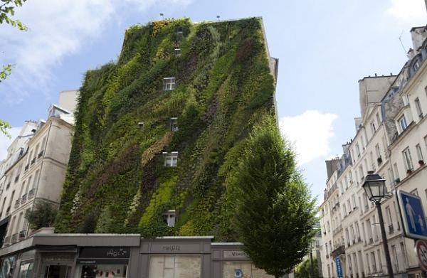 paris-verde-100-hectareas-1_opt