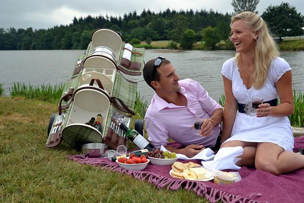 picnic-vip-3_opt