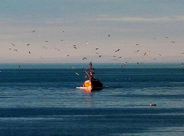 puerto-de-mar-del-plata_opt