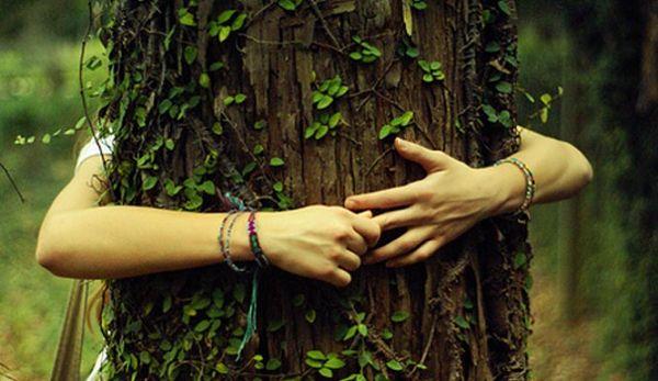tree-hugger-1_opt