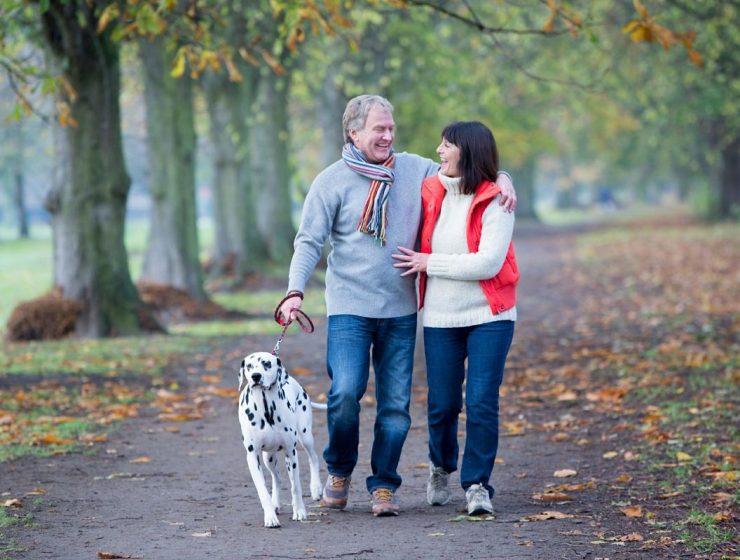 caminar y pasear al perro