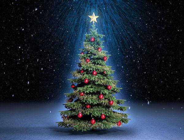 Imagenes de arbol de la navidad