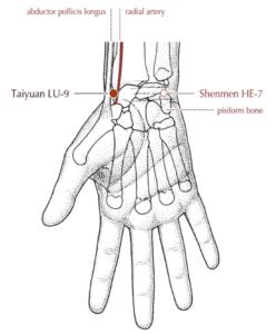 Punto LU9 Tai-Yuan de la Acupuntura