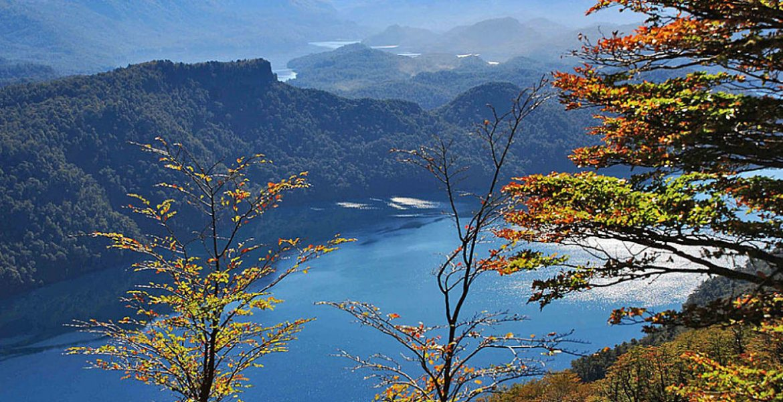 7 lagos