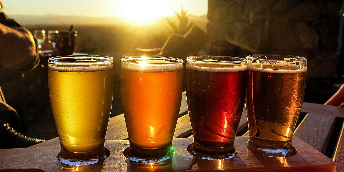 experto en cerveza artesanal