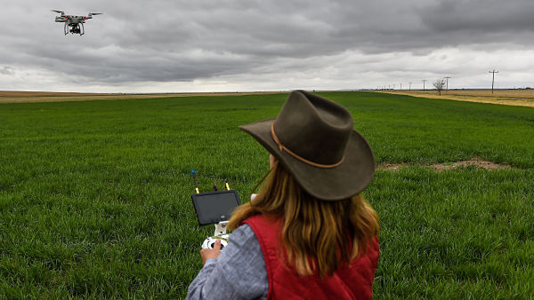 dron vigila campo