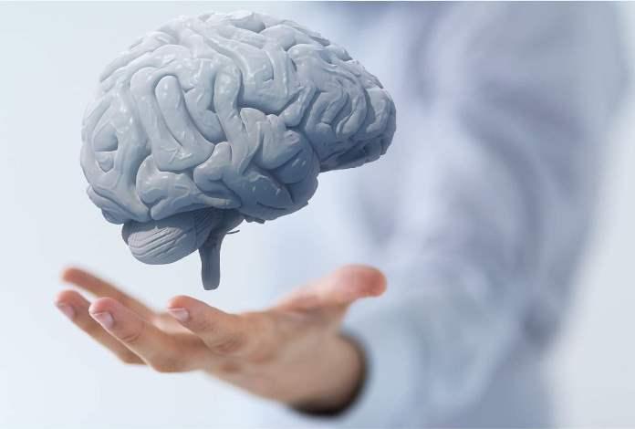 cerebro salud