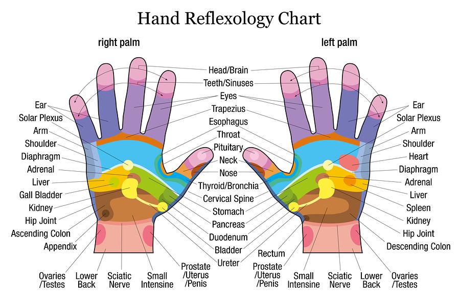 reflexologia holistica