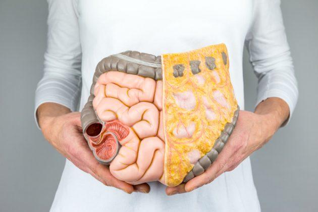 que es el reflujo gastrico y como se cura