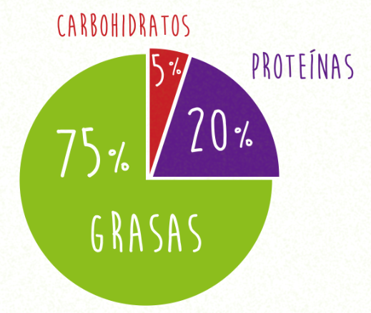 dieta cetogénica anticancer