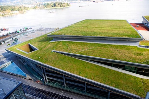 primavera techos verdes