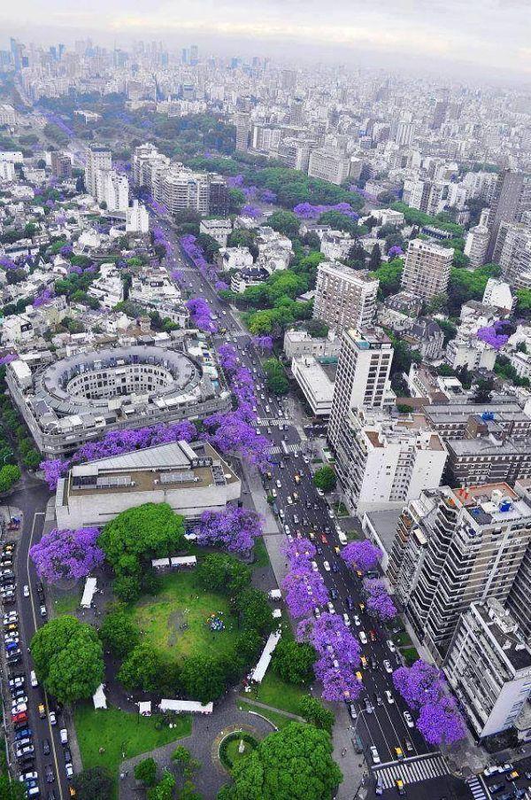 Buenos Aires florecido