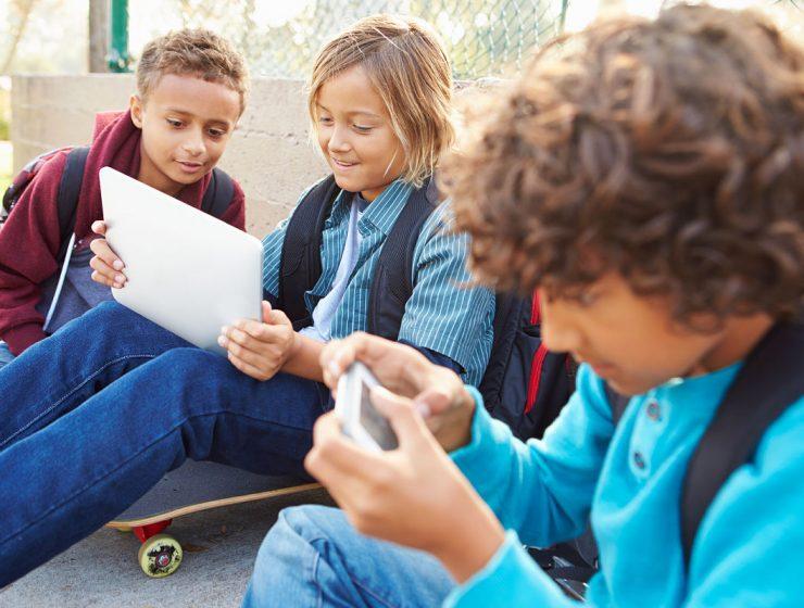 educacion celular