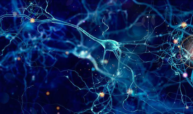 Resultado de imagen de estimulación eléctrica sincronizada cerebro