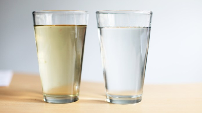 purificar el agua