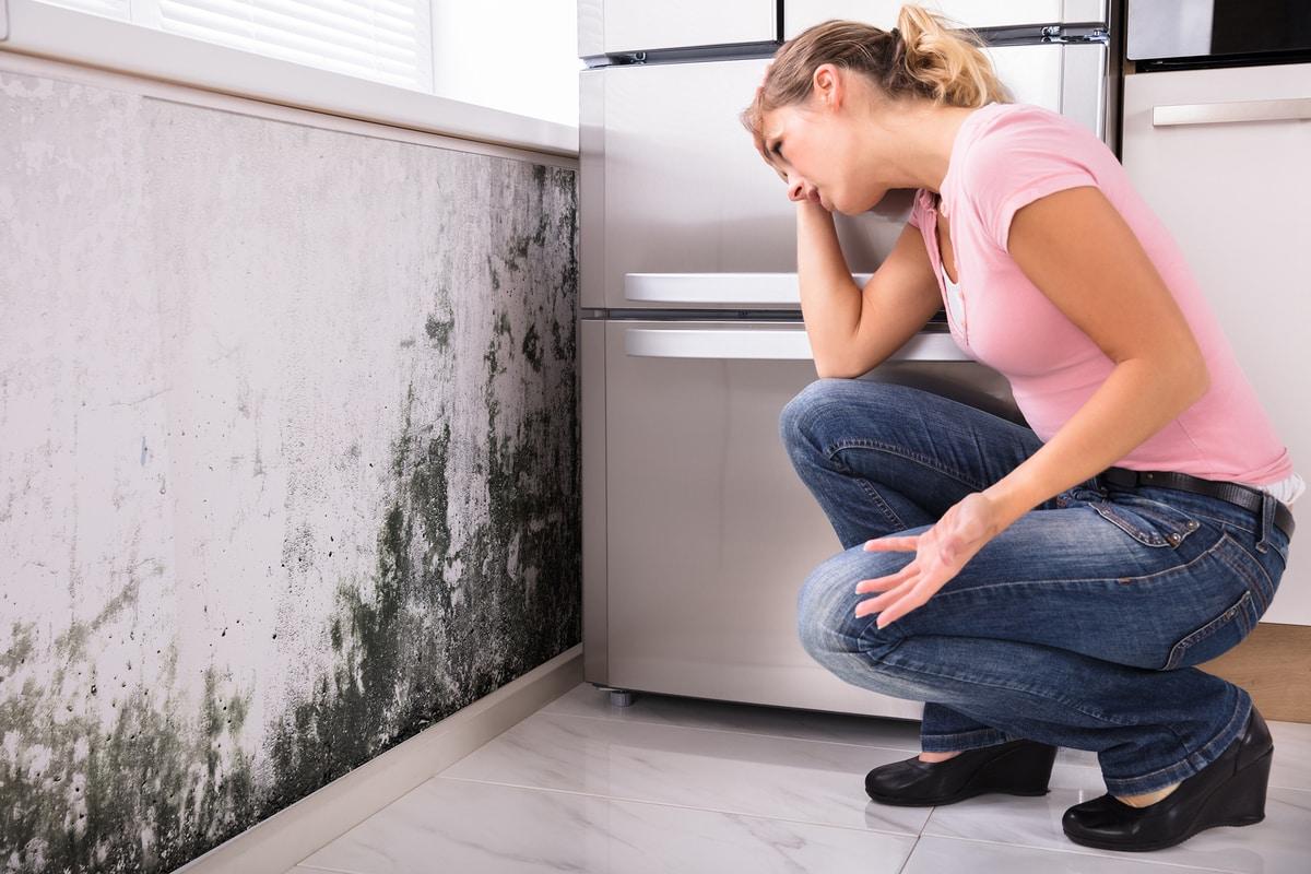 cómo pintar una pared con humedad