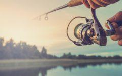mejores cañas de pescar