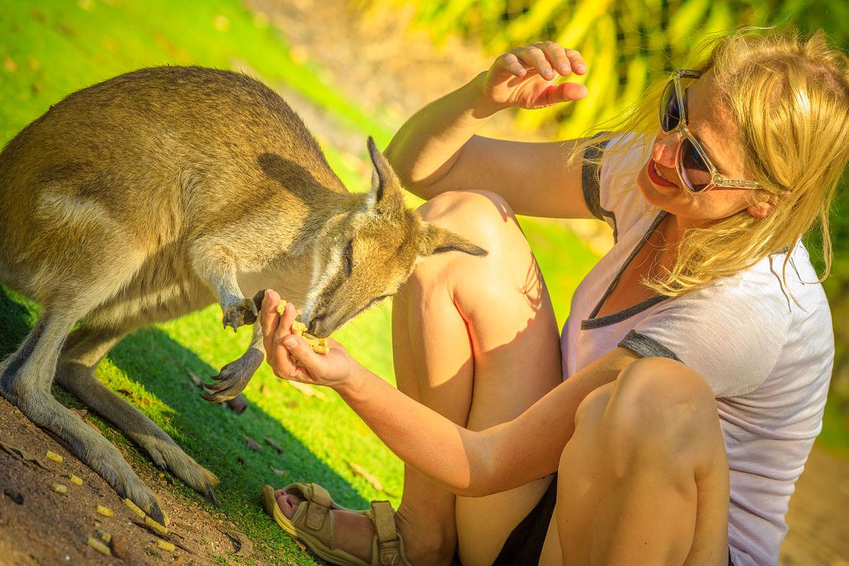 Por qué viajar a Australia